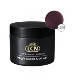 High Gloss Colours 10 ml - summernight violet