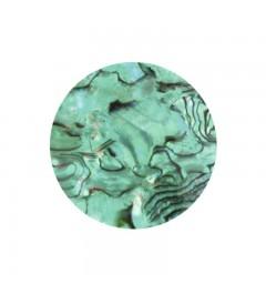Sea Shell - peppermint